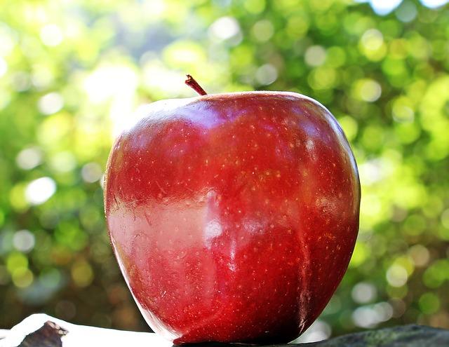 りんごの中身は見えない